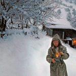 AVERTIZARE METEO – Alerta pentru ninsori viscolite in Maramures a fost prelungita pana in 22 ianuarie