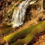TURISM LAPUSEAN – Valtorile din Dealul Corbului (GALERIE FOTO)