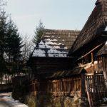 SOLUTIE – SALVAREA IDENTITATII – Budestenii care isi construiesc locuinte din lemn primesc gratuit proiectul de casa (VIDEO)