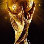 CM 2010. Comitetul de organizare nu a decis cine va inmana trofeul