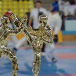 TAEKWON-DO ITF. Gi Do Baia Mare – primul bilant pentru 2011 si cursuri de autoaparare si performanta