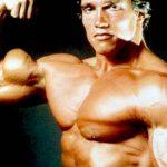 TERMINATOR – Arnold Schwarzenegger ar putea ataca presedintia UE