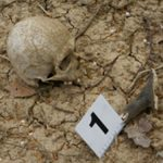 INVESTIGATII – Craniul uman gasit in Valea Romana este al unui barbat decedat cu 10 ani in urma