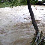 PROGNOZA REA – Specialistii anunta cresteri ale debitelor pe raurile din Maramures