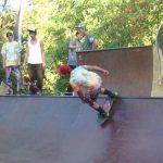 WHEELS OF CONFUSION – Distractie pana in zori, gulas la ceaun si demonstratii de skateboarding si biking, la barajul Firiza (VIDEO)