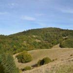 DRUMETII – TRASEE TURISTICE MARAMURES – Varful Mogosa, valea Secaturilor si Arsita (GALERIE FOTO)