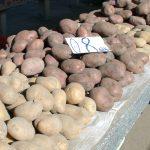 PRETURI LEGUME – Concurenta supermarketurilor ieftineste piata agroalimentara din Baia Mare (VIDEO)