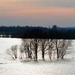 VICTIME IN BULGARIA – Inundatiile au facut victime in sudul Bulgariei