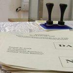 REFERENDUM IN TOAMNA – Premierul ia in calcul organizarea unui referendum pentru revizuirea Constitutiei