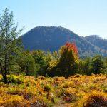 DRUMETII – TRASEE TURISTICE MARAMURES – Din Groape (Chiuzbaia), la aria naturala protejata Lespezi, Ignis (GALERIE FOTO)