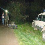 CONTRABANDA PE TISA – Tigari ucrainene in valoare de peste 50.000 de lei, confiscate la granita din Sighetu Marmatiei