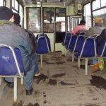 TRANSPORT – Varstnicii maramureseni vor simplificarea procedurii de obtinere a reducerilor pe autobuzele Urbis (VIDEO)