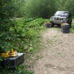 CONTRABANDA – Opt focuri de arma trase la frontiera cu Ucraina (VIDEO)