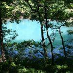 CREATIE – Peisajele din Baia Sprie vor fi redate pe panza de artistii plastici prezenti in tabara de pictura (VIDEO)