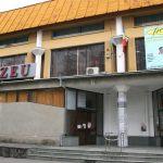 "EXPOZITIE – Artista Voichita C. Calacean prezinta ""Transilvania Eterna"" la Muzeul de Mineralogie din Baia Mare"