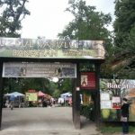 MUZEELE TARII –  Muzeul Satului Banatean din Timisoara