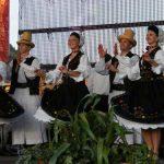 ARTA – Primul spectacol important din 2015 al Ansamblului Folcloric National Transilvania, programat pentru finele lunii februarie (VIDEO)