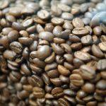INCALZIRE GLOBALA – Consumul de cafea ameninta padurea tropicala