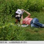 SANATATE – Natura poate fi vitala pentru sanatatea mintala a oamenilor