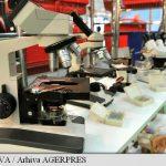 STIINTA – Cercetatori americani propun o metoda pentru a reduce prezenta bacteriei E.coli in alimente