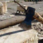 MUNCA – Inspectorii de munca maramureseni au trecut la controale la cei care lucreaza cu zilieri