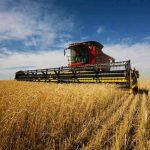 Încep controalele Agenției de Plăți și Intervenție pentru Agricultură