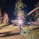 Tragedie în județul Bihor – 1 mort și 16 răniți în urma unei furtuni puternice