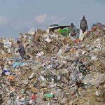 Șapte centre de colectare a deșeurilor voluminoase, în Maramureș
