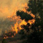 Alertă de călătorie în Croația din cauza incendiilor de vegetație