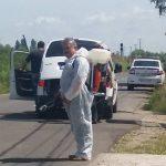 Pesta porcină închide târgurile din Maramureş