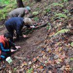 Aniversare inedită ! Nevăzătorii din Baia Mare au marcat  Ziua Bastonului Alb recoltând minerale