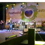 """Sărbătoarea continuă ! Vezi programul din acest weekend al """"Festivalului Castanelor"""""""