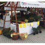 Târg de Produse Tradiţionale şi Meşteri Populari în Centrul Vechi din Baia Mare