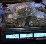 Droguri descoperite la frontiera din Maramureș ! Vezi unde erau ascunse substanțele interzise (video)