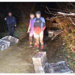 Zeci de mii de pachete cu țigări de contrabandă confiscate la frontiera de nord