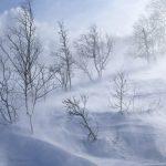 MARAMUREȘ – Cod galben de ploi, vânt și ninsoare