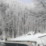 Strat de zăpadă de 20 de centimetri în Maramureş. Cum se circulă pe drumurile din judeţ