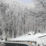 Zăpadă de 15 centimetri în Maramureş. Vezi cum se circulă pe şoselele din judeţ