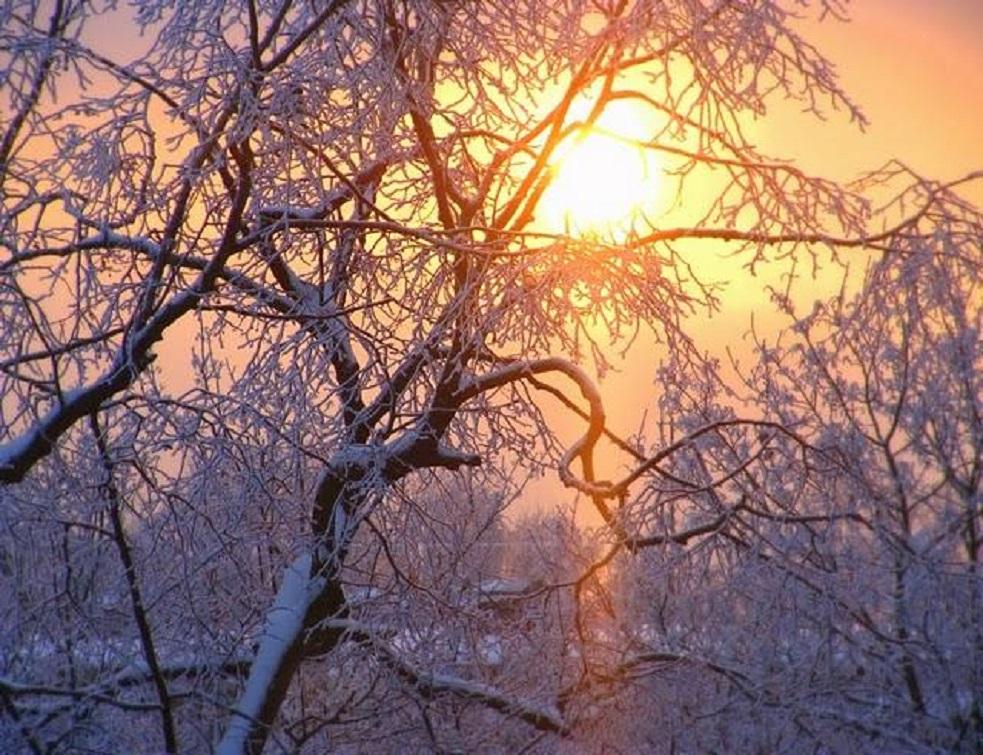 foto http://elldor.info