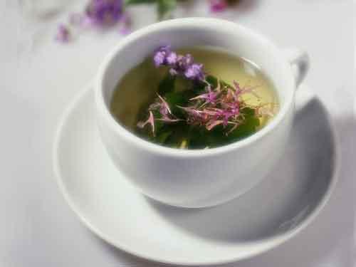 egcg ceai verde