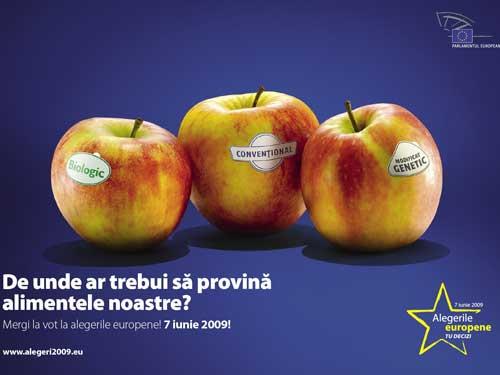 Foto afis campanie alegeri PE 2009