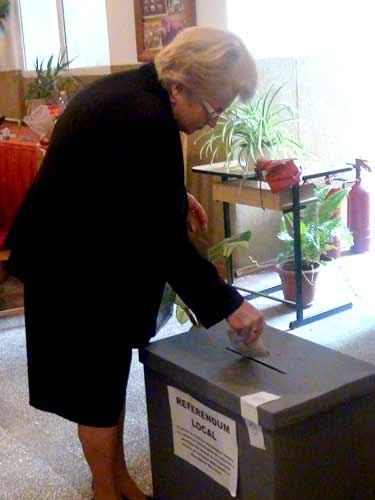 Foto referendum antipoluare Baia Mare - rezultate finale