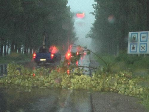 Foto furtuna Baia Mare - 20 iunie 2009 (c) eMaramures.ro