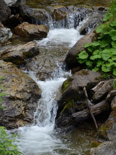 Foto Valea Tomnatecu (c) Lucian Petru Goja