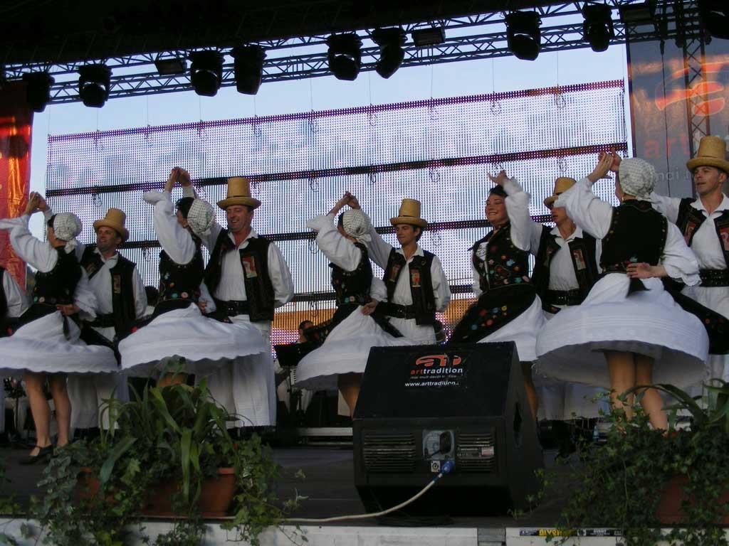 REGAL FOLCLORIC – CASTANE 2009 – Public de toate varstele la spectacolul de folclor al Ansamblului Transilvania