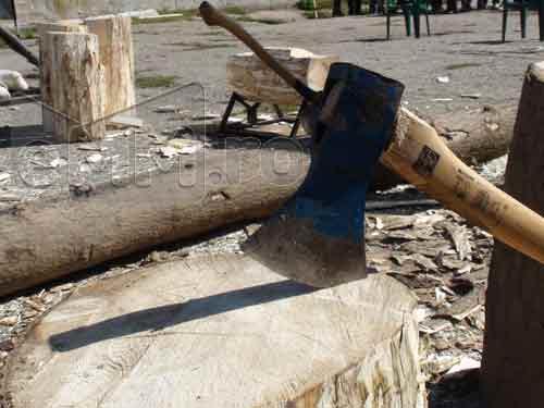TAIETORI DE LEMNE - Concurs de taiat lemne, organizat de IPJ la Sighetu Marmatiei